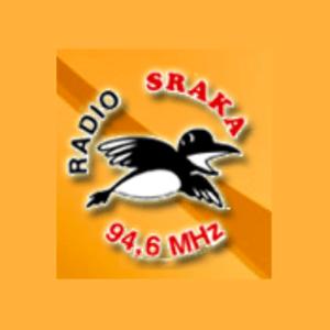 Rádio Radio Sraka 94,6
