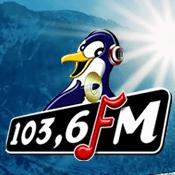 Rádio Radio Pinguin 103.6 FM