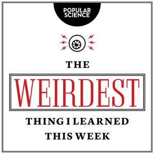 Podcast The Weirdest Thing I Learned This Week