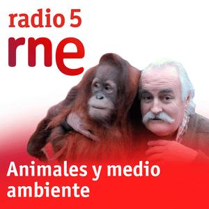 Podcast Animales y medio ambiente