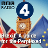 Brexit: A Guide for the Perplexed