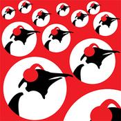 Rádio Pinguin Pop