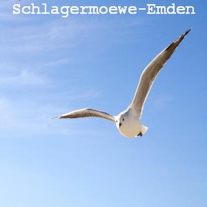 Rádio Schlagermöwe-Emden