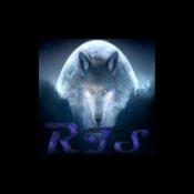Rádio Radio Team Spirit