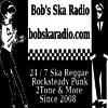 Bob's SKA Radio