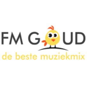 Rádio FM Goud