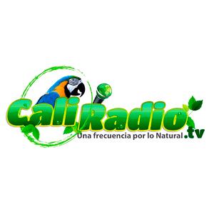 Rádio Caliradio