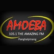 Rádio Radio Amoeba 105.1 FM