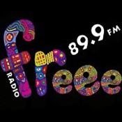 Rádio Radio Freee
