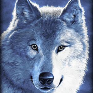 Rádio wolfs-radio1