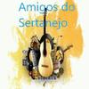 Rádio Amigos do Sertanejo