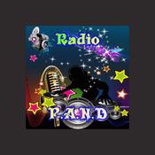 Rádio radio angel night