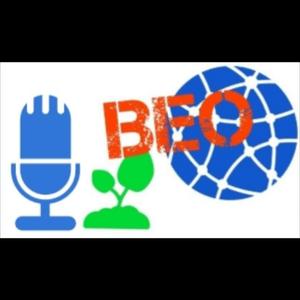 Rádio beo-radio